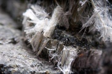 close up of asbestos fibers